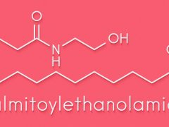 Relive your chronic pain with Palmitoylethanolamide