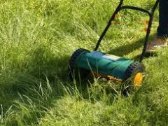 Ideal Reel Lawn Mower: 5 Eco Friendly To Assist Your Yard Look Attractive